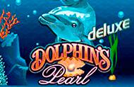 Видео-слот Dolphin's Pearl Deluxe