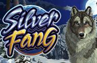 Игровой аппарат Silver Fang